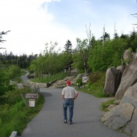 Clingman's Dome, widower