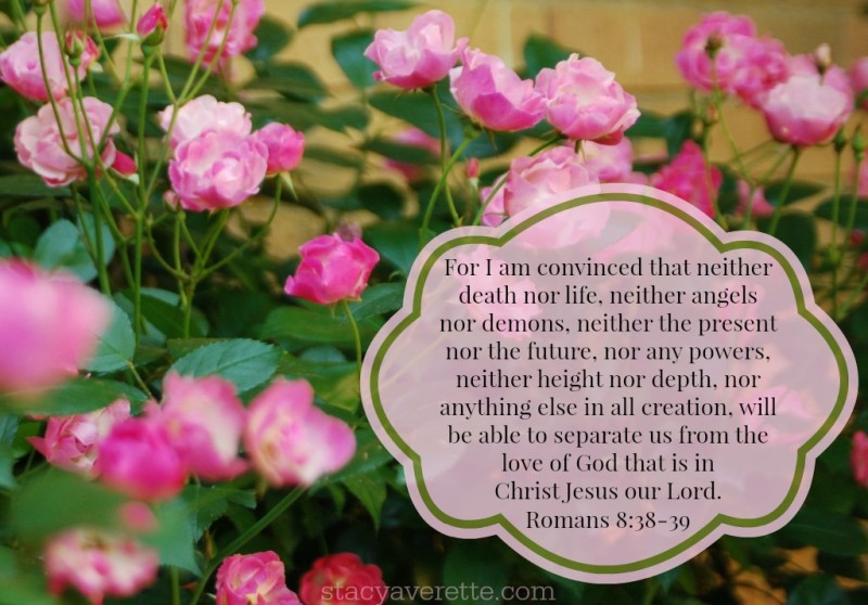More than conquerors, the love of God
